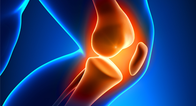 Shark Cartilage for joint pain