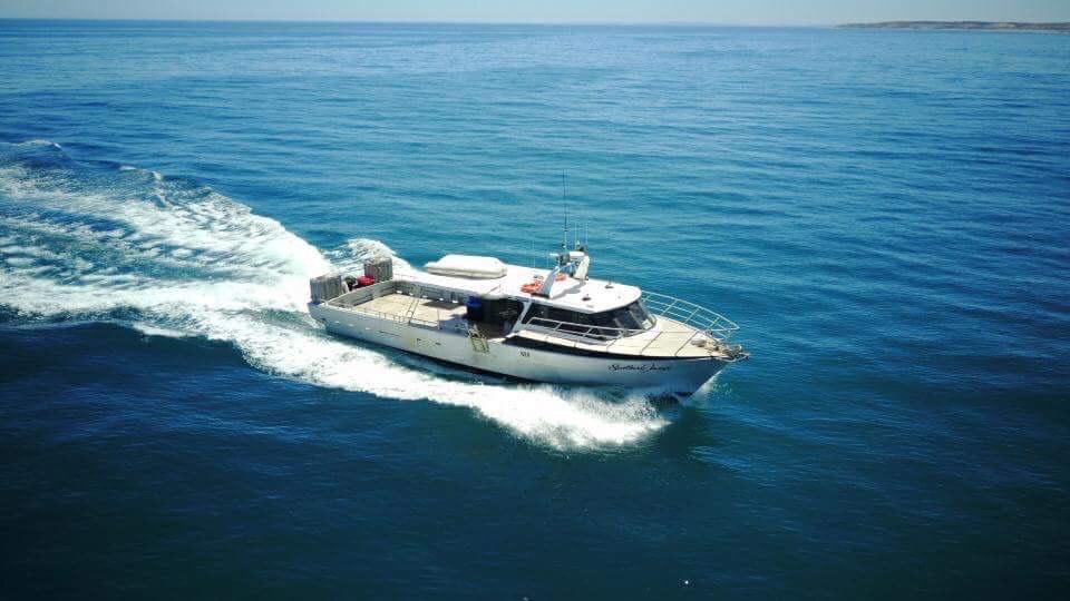 boat on south australian sea. Natural source of South Australian Shark Cartilage